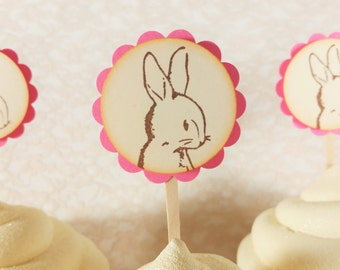 Peter Rabbit Cupcake Toppers Pink and Ivory Peter Cottontail Baby Shower Birthday Cake Toppers