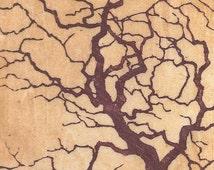 Packaged Print Studio Sale - hand-pulled woodblock moku haga fine art print tree