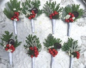 Winter boutonnoniere, holly berries, cedar and accents