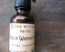 Black Walnut Hull Herbal Infused Oil - Juglans nigra - Wildcrafted and Organic - 4 oz