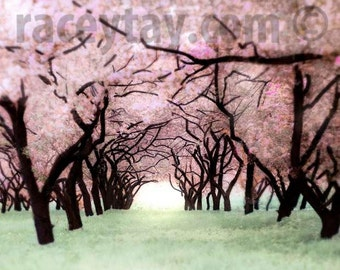Girl Nursery Decor, Pink, Green, Cherry Trees, Purple Pink, Spring, Pastel, Nature Photography