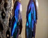 Real Elytra Rare Blue beetle wing cascading dangle earrings sterling silver ear wire size 1