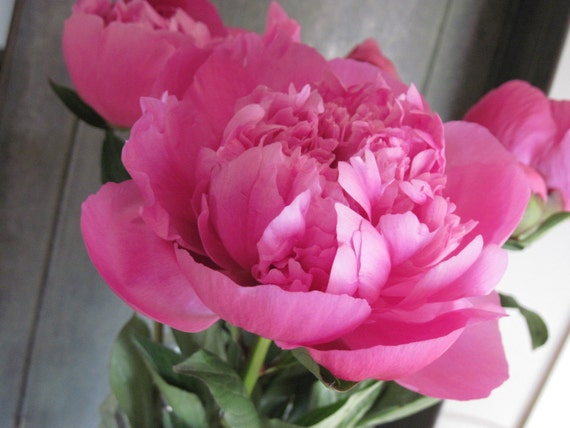 PINK PEONY  Whipped Body Parfait Natural Blendings Most Popular Product Made to Order 8 oz Jar