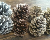 Glittered Pinecone Bowl Filler- Crafting Pinecones - Bowl Fillers