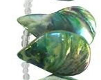 "Blue Moon Beads Strand 7"" Shell 9 Abalone Green"