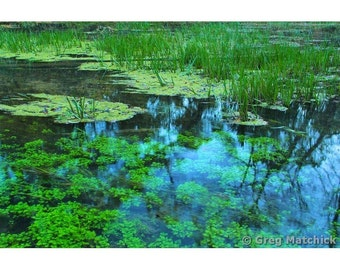 Fine Art Color Nature Photography of Round Spring in Missouri Ozarks