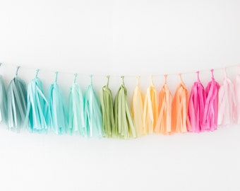 Tissue Tassel Garland Kit - Rainbow