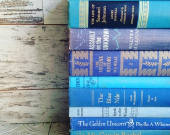Blue Books Instant Library Collection Decorative Vintage Book Bundle Photography Props Coastal Home. Beach, Ocean