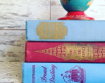 Red and Blue Books by Color Bundle vintage Decorative Books Instant Library Collection Photography Props burgundy