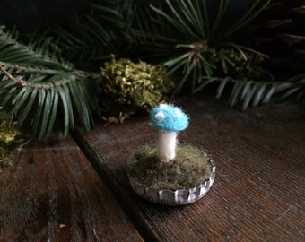 Felted Bright Turquoise amanita mushroom in a white bottlecap, fairy house decor, miniature felt mushroom, gifts for mushroom hunters