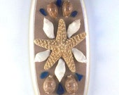 Wall Plaque with Selected Natural Sea Shells & Glass Shards Beach Lovers Beach Finds Beach House
