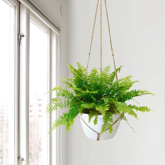 Extra Large Natural Beige Macrame Plant Hanger By