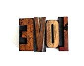 LOVE ... big old vintage letterpress blocks wooden letters block wood letters love sign lot2