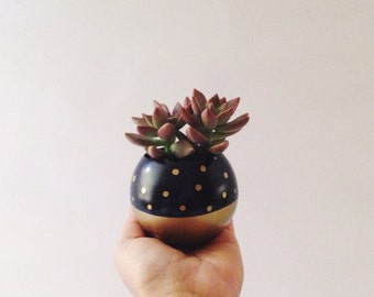 Sphere Pod Planter // Black + Gold Dots