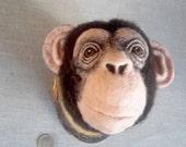 ON SALE needlefelted chimpanzee head