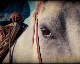Cowboy Rodeo Western Horse Fine Art Photography Rustic Southwest Country Home Decor Wall Art