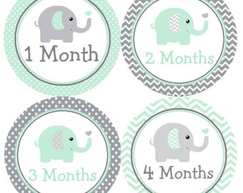 Baby Month Stickers Mint Green & Gray Elephant Monthly Belly Labels from 1 to 12 Months in Mint and Grey Chevron and Polka Dots for Baby