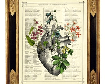 Flowers Anatomical Heart Botany I - Vintage Victorian Book Page Art Print Steampunk Valentine's Day