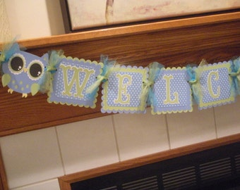 Special Sale,Welcome Little One Banner, Open Eye Owl Banner, Owl Banner, Little Boy Baby Banner, Baby Shower Banner, Tissue Poms Available