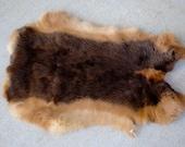 Soft Tanned Rabbit Pelt