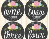 SALE Baby Girl Month Stickers Monthly Baby Stickers, Milestone Baby Month Stickers, Monthly Bodysuit Vintage Roses Floral Chalkboard Chalk