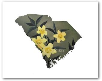 SOUTH CAROLINA PRINT / Sweet Carolina Illustration / State Flower