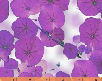 Violet - Nasturtium Purple Lavender by Another Point of View from Windham Fabrics