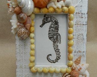 Mini Yellow Nerite Seashell Frame with Seahorse Image