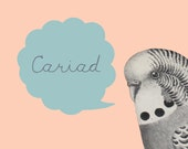 Cariad Bird Pink Blue Art Welsh Text Ceramic Mug 11oz - Love