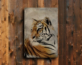 Tiger Eyes - Tiger photography - Tiger decor - Tiger art - Tiger wall decor - Animal Photography