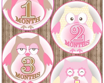 Printable OWL Monthly Baby GIRL Iron On Months 1-12, Monthly Baby Stickers, Owls, Onesie Stickers, Baby Milestone Iron On,