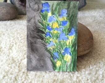 Irises Mini Art Card