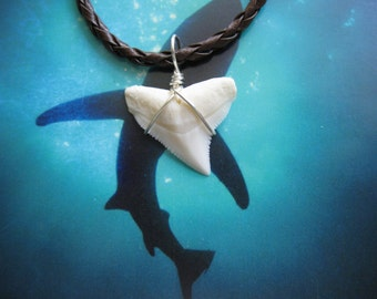 Shark Tooth Necklace, Modern Day Bull Shark tooth, Silver plated wire, Braided Leather cord