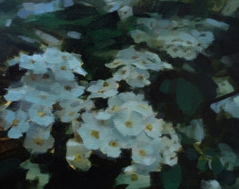 "Archival 10"" x 10"" Art Print / Free Shipping / White Meadowsweet (no.136) Oil Painting Floral Flowers Nature Petal Realism 2016"