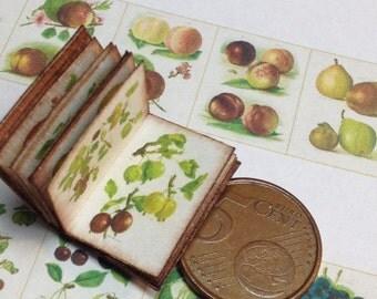 1:12 Miniature fruit book