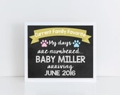 Pregnancy Announcement sign, pregnancy chalkboard sign for pets, current family favorite, photo prop