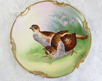 Stunning Hand painted antique china plate- vintage porcelain- Large Size- Quail, Wild Birds- Artist signed - Coronet, Limoges, France