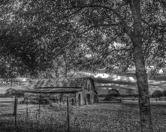 Black and White Barn • Rural Photography • Fine Art Photography • Louisiana Photography • Black and White Photography