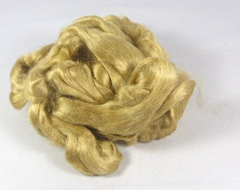 Muga silk Pure natural gold luxury Assam silk top sliver fibre  25 grams - .8 ounces fiber.  Spinning or felting fiber