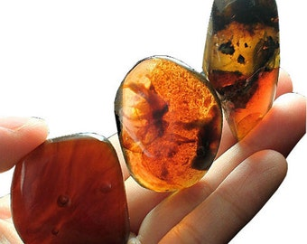 20.3 GRAMS SUMATRA BLUE Copal Amber Specimen Large Pieces for Jewelry
