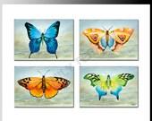 Butterfly Sampler Print