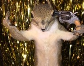 Taxidermy Suicide FTW Squirrel Shooting Itself / Gun & Middle Finger