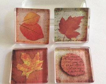 Fall glass magnets, Fall decor, Fall leaves, Autumn decor, Fridge magnets, Cubicle decor, Office decor, Teacher gift, Kitchen decor
