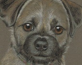 Vintage  original hand drawn pencil drawing of a dog by Sally Logue in a 10 x 8 inch mount