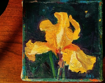 "Yellow Bearded Iris, 4""x4"" Small, ORIGINAL, expressive oil painting by Maine artist Adrienne Kernan LaVallee, impasto"