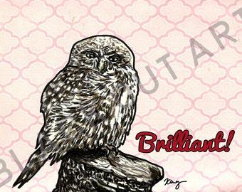 Brilliant Owl: Sassy Birds Art Print (5x7 or 8x10)