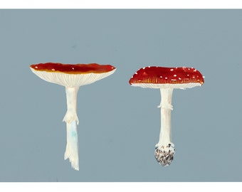 Two Toadstools- fine art print by Tai Snaith.