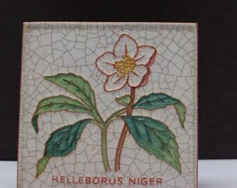 Karlsruhe Majolika Helleborus Niger  Wall Tile Fat Lava 60's Mid Century West German Pottery