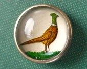 Pheasant waistcoat button, vintage.   Featuring a Pheasant doing walkabout, it appears to be on a pearly background, domed glass. c1950's.