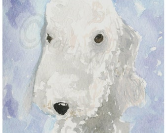 Bedlington Terrier Dog Art Print #33